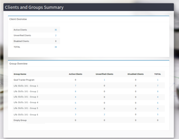 Client and Groups Summary Report